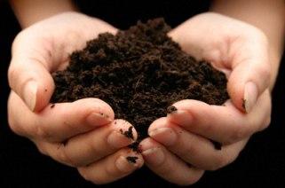 garden-fertilizer