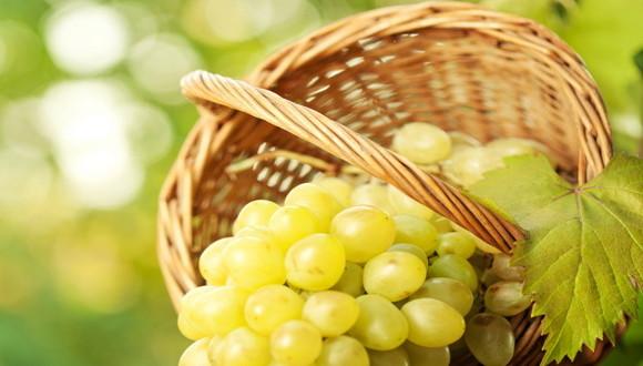 vinograd vyrashivanie