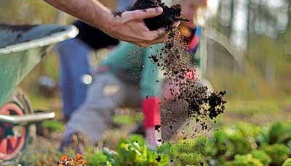 organicheskie udobreniya dlya rastenij