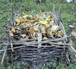 укрытие листьями на зиму