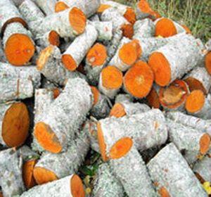 дрова ольхи