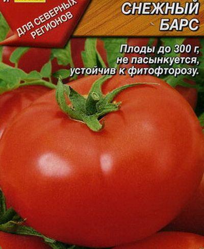 томат Снежный барс