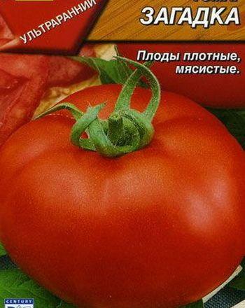 сорт помидора загадка