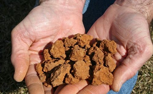 Добавить глину в почву