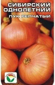 лук Сибирский однолетний