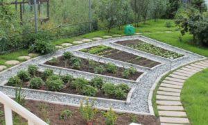 красивые грядки для огорода фото идеи