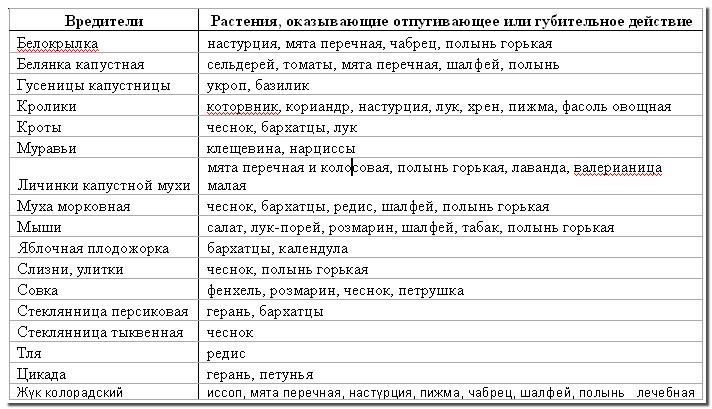 rasteniya-zashhitniki