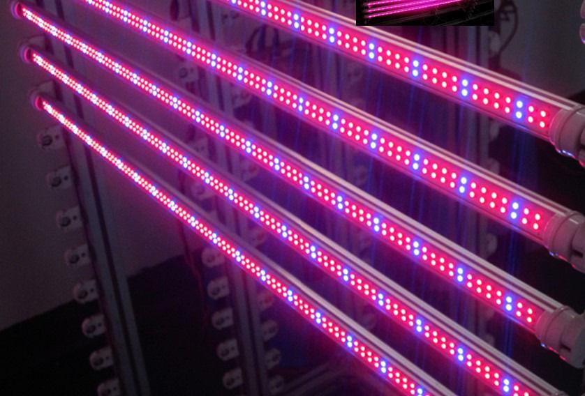 светодиодные фитолампы для растений купить в курске