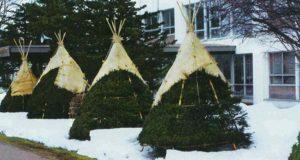 укрывной материал на зиму
